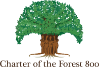 Charter of the Forest 800